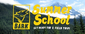 Bark Summer School